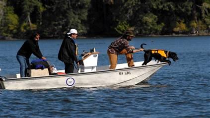dogtrackingbyboat.jpg